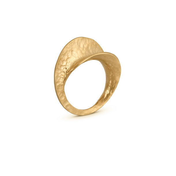 ANILLO dorado INFINITE LOVE